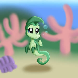 Sasha the Seahorse