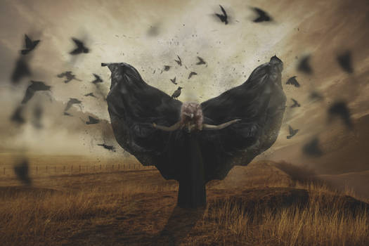 Raven Keeper
