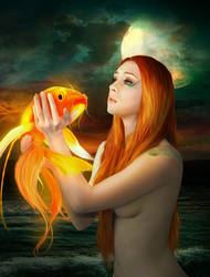 Wish Upon a Golden Fish