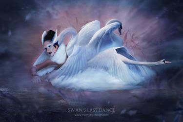 Swan's Last Dance by Methyss
