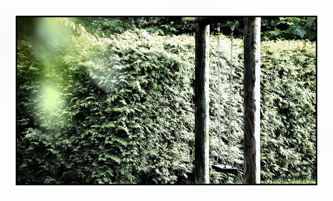 the swing by Fr34kZ