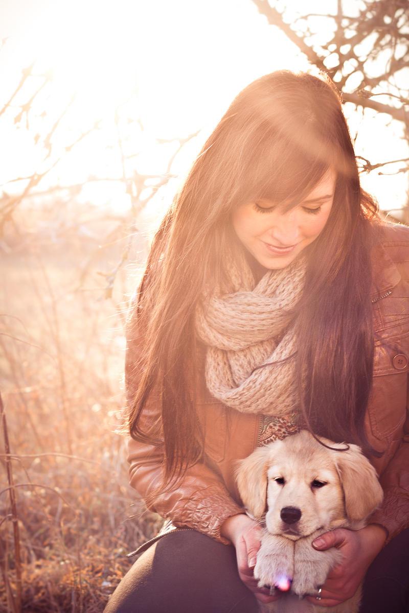 Golden Winter II by Fr34kZ