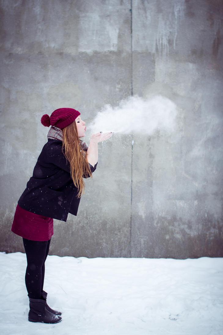 Snowy II by Fr34kZ