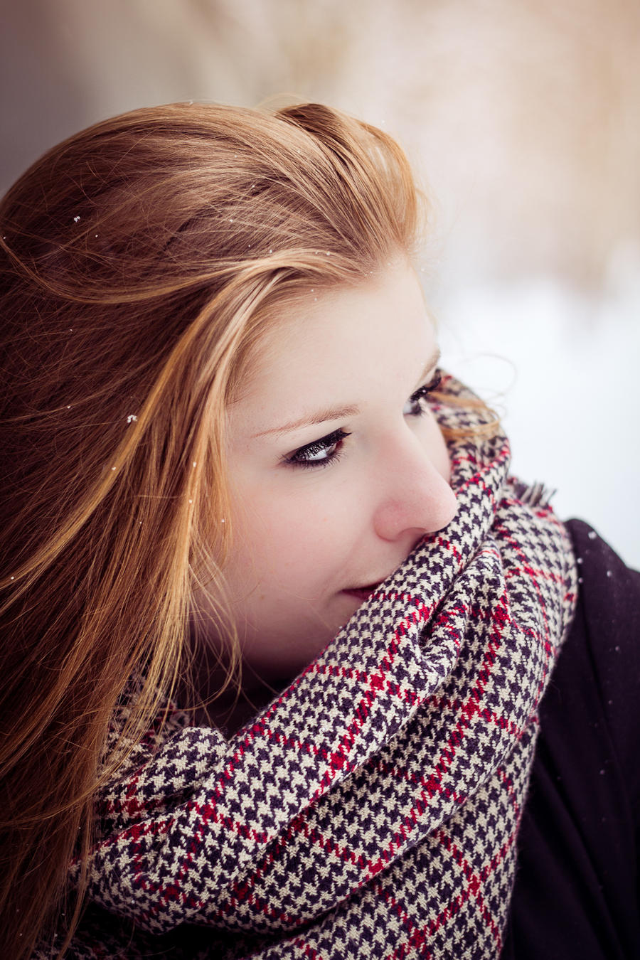Snowy IV by Fr34kZ