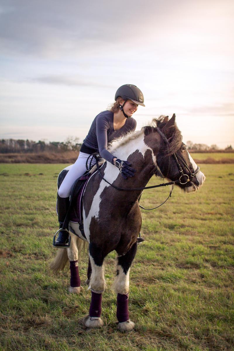 Horsemanship I by Fr34kZ