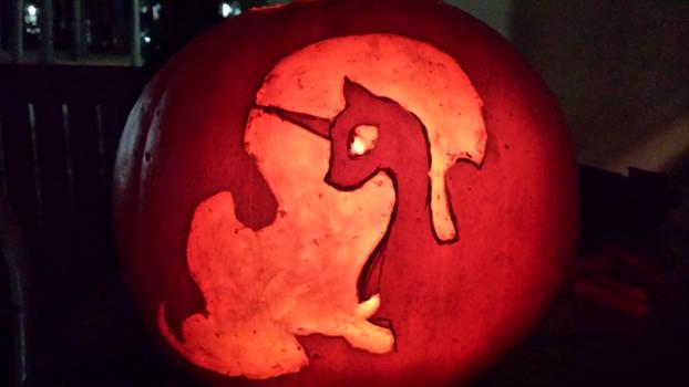 Pumpkin Luna 2014