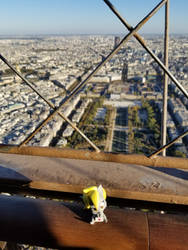 From the Top of Eiffle Tower