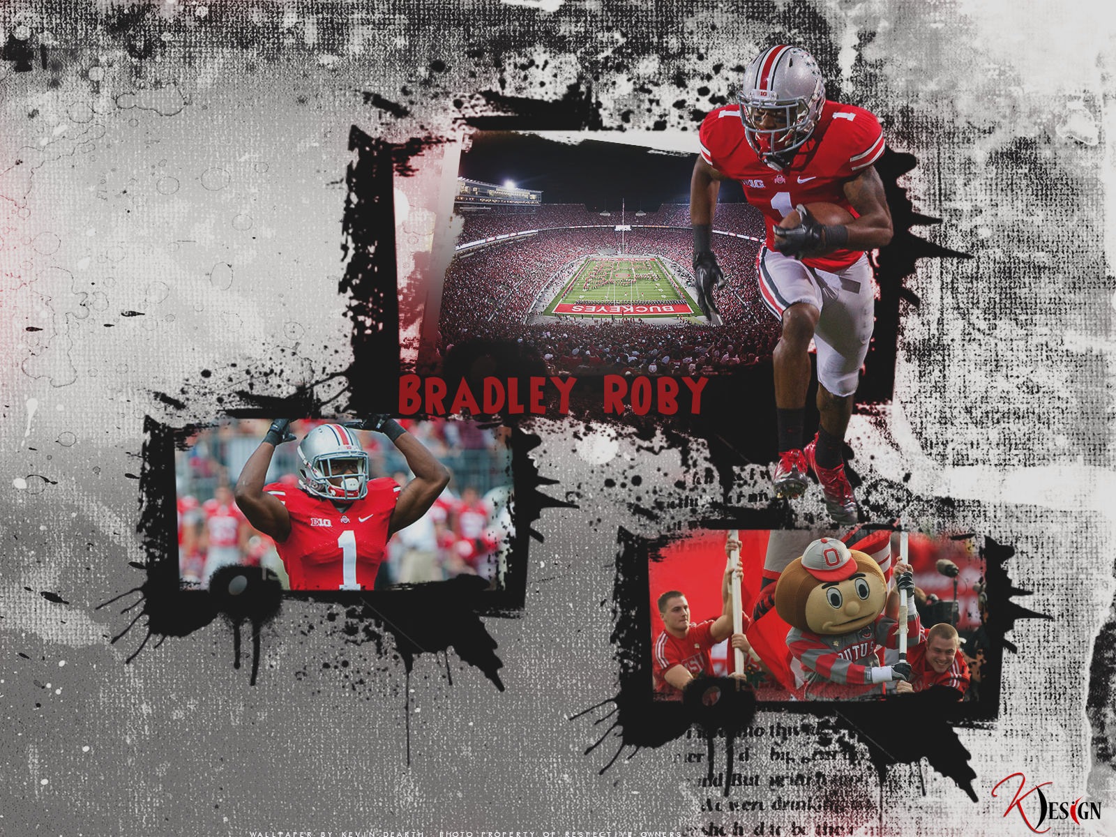 Bradley Roby Wall by KevinsGraphics