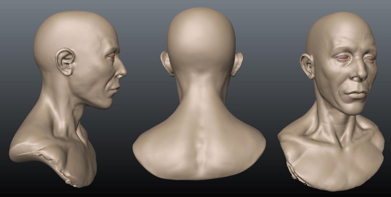 Head sculpt 3dCoat by gabe687 on DeviantArt