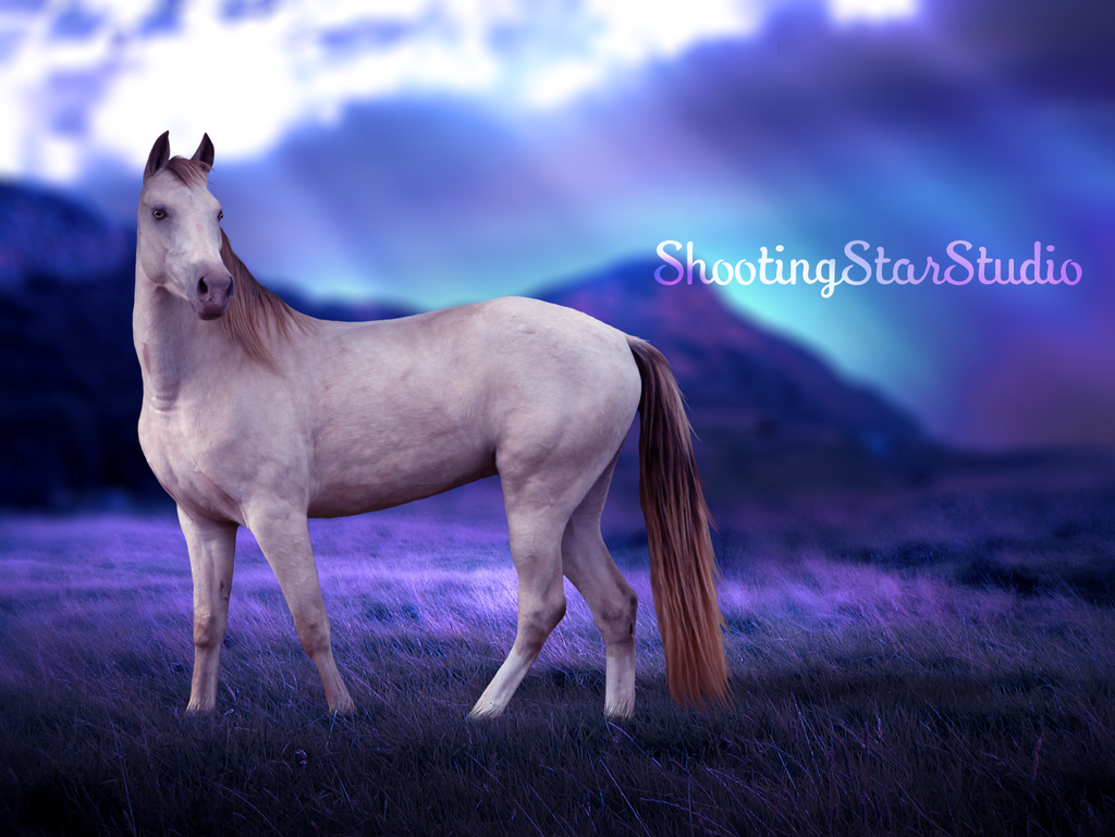 Aurora by ShootingStarStudio
