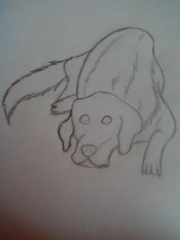 Hundi by oOFrosteehOo