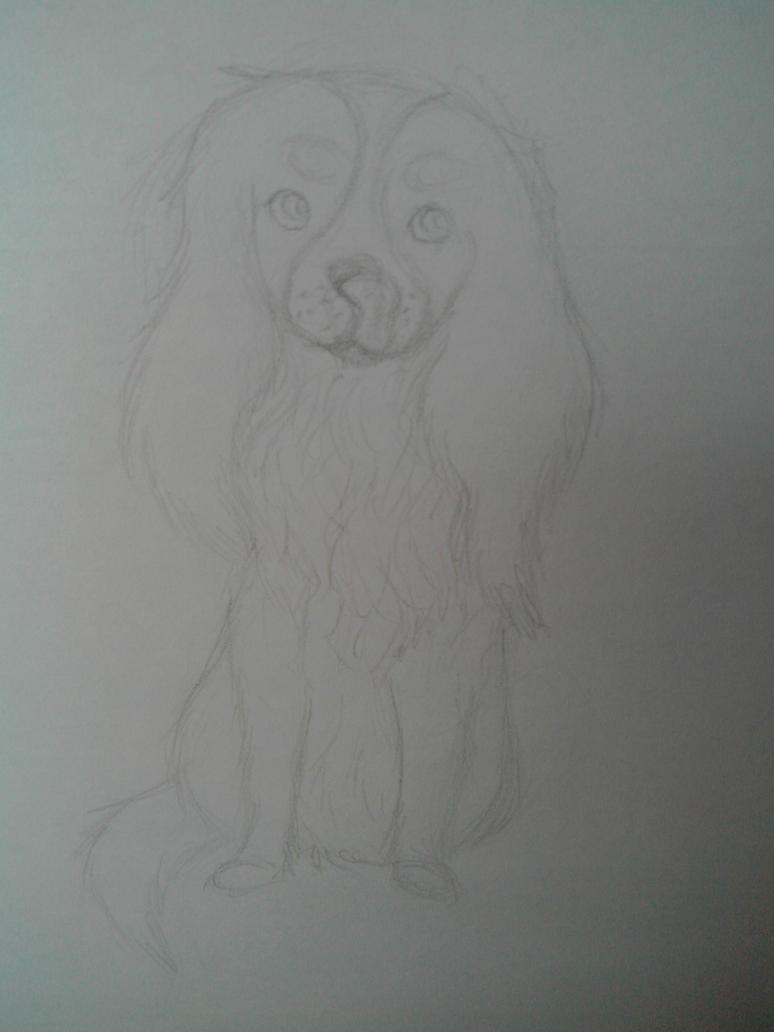 Sketchy Cavalier by oOFrosteehOo