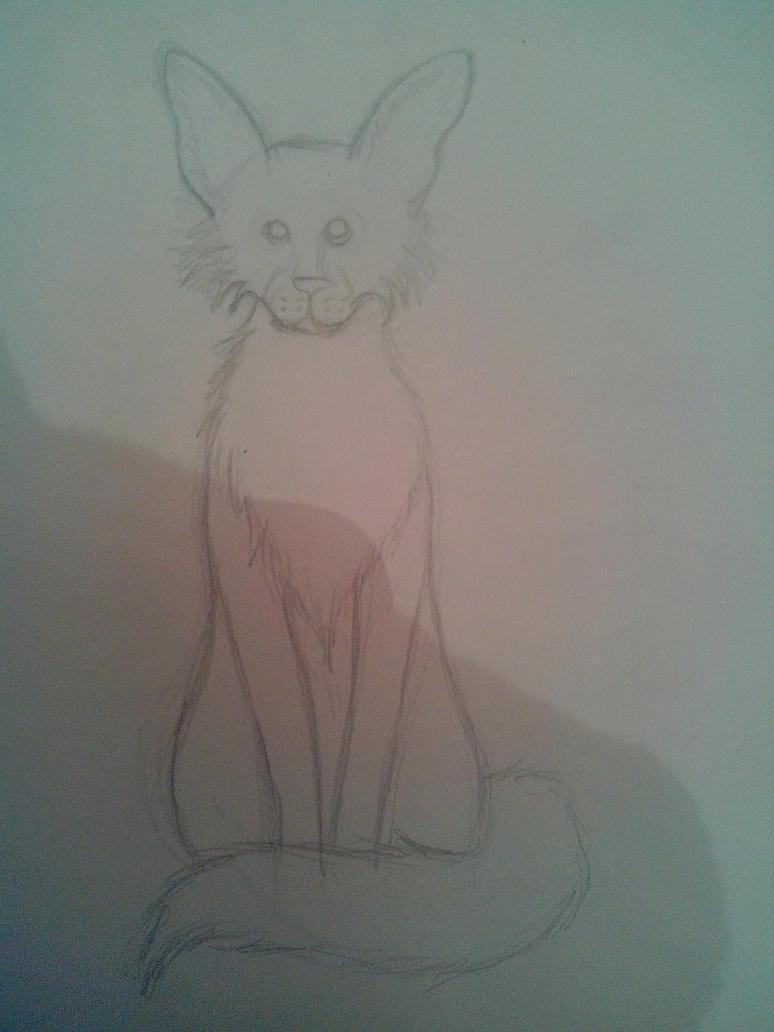 Random Katze by oOFrosteehOo