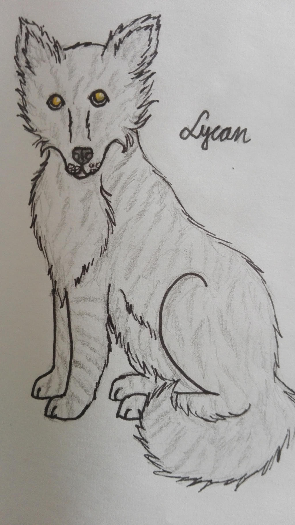 Lycan by oOFrosteehOo