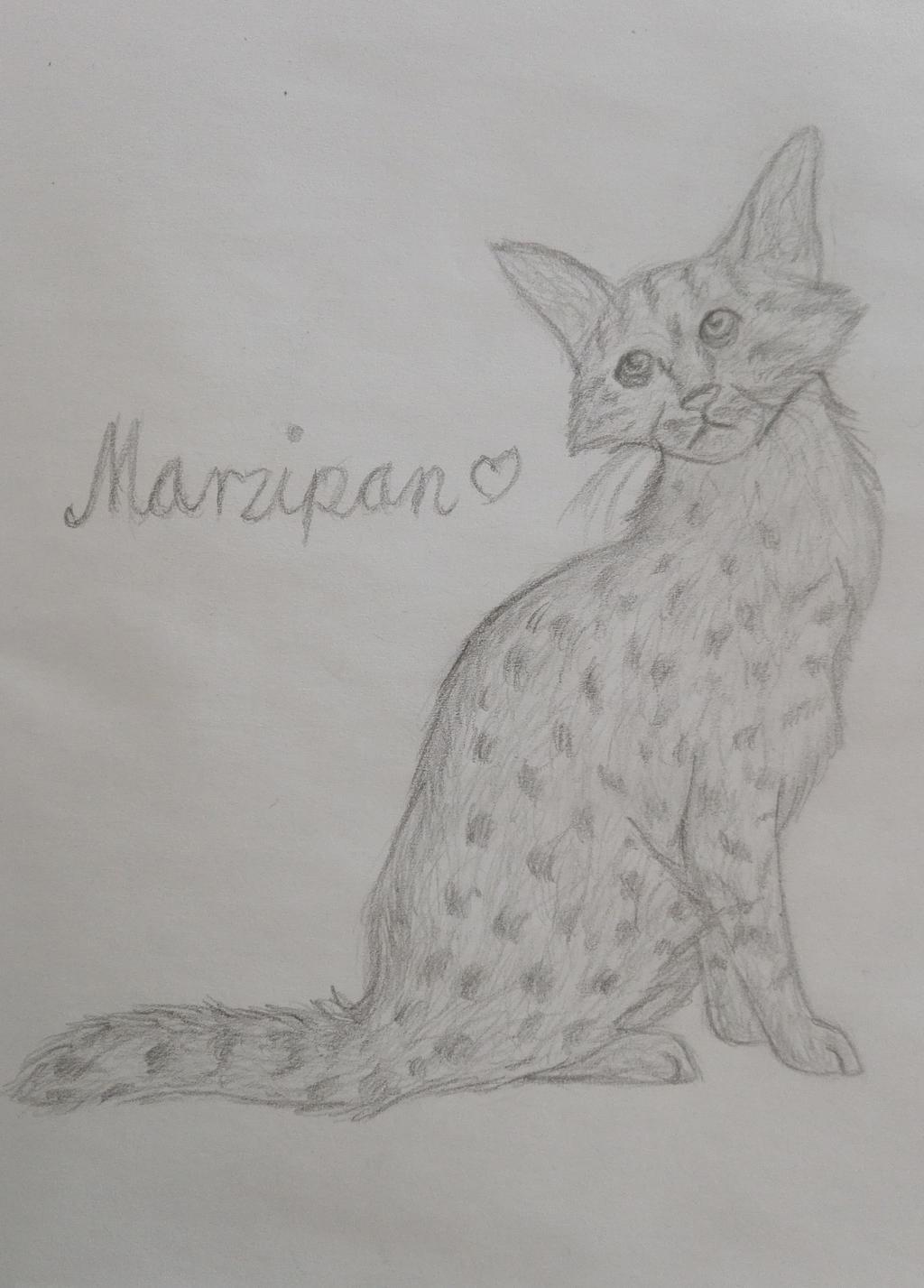Marzipan by oOFrosteehOo