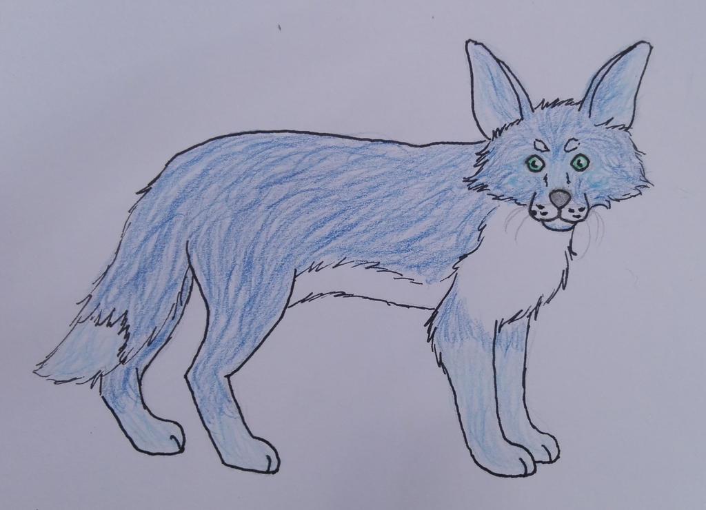 Blue Fox by oOFrosteehOo