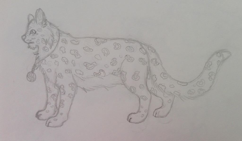 Leopard Sketch by oOFrosteehOo