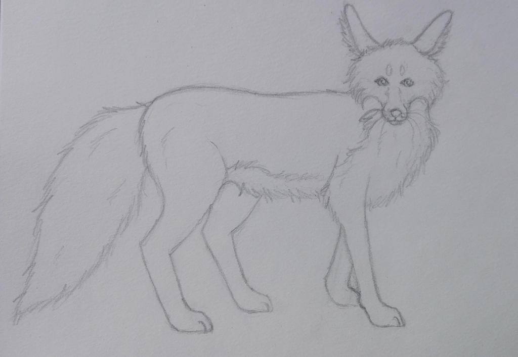 Fox Sketch by oOFrosteehOo