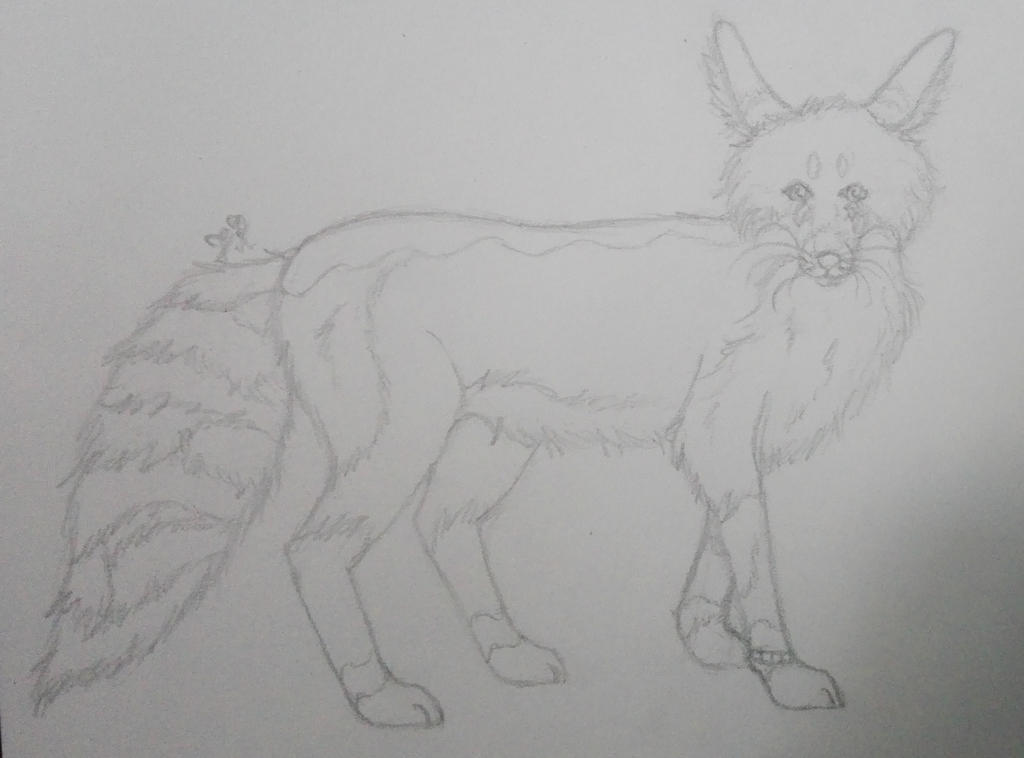 Sketch RQ Foxface by oOFrosteehOo