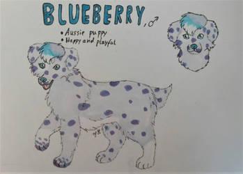 Blueberry Refsheet by FrostetSpots