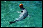 Dolphin 04
