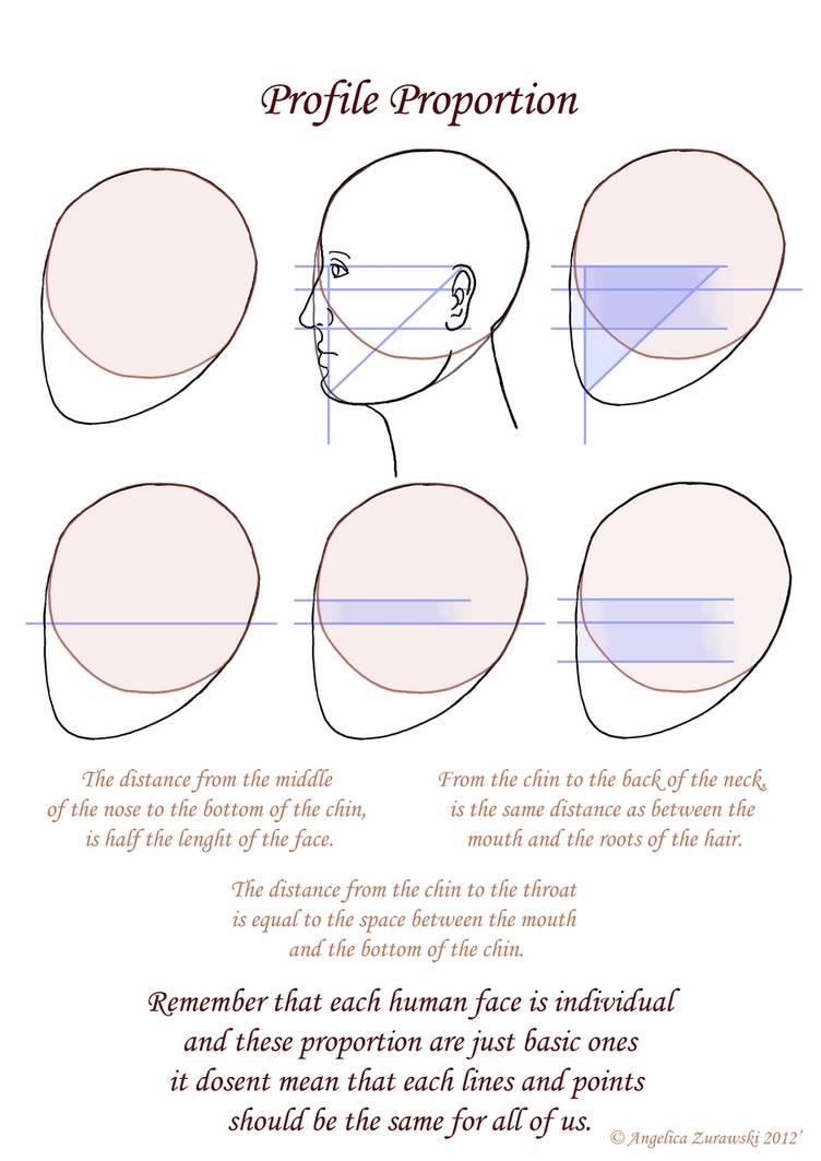 Profile Proportion by endzi-z