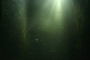 underwater by koko-stock