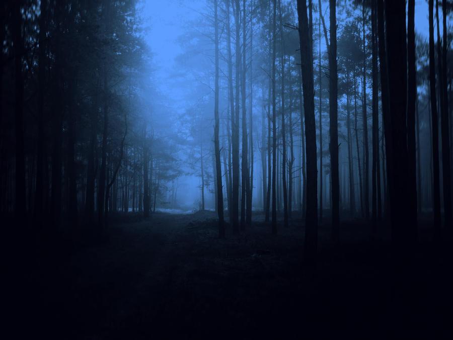 Gallery Dark Mystical Forest