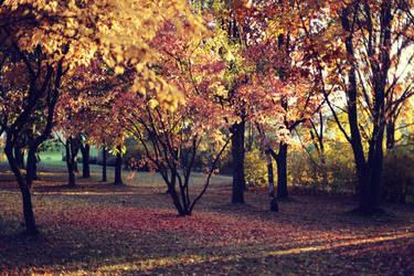 Autumn stock by koko-stock