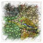 The Atlas of Dreams - Color Plate 174