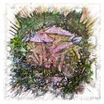 The Atlas of Dreams - Color Plate 176