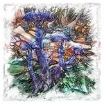 The Atlas Of Dreams - Color Plate 191