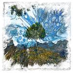 The Atlas of Dreams - Color Plate 195