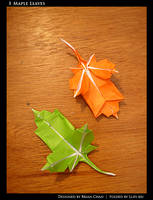 maple leaves by llifi-kei