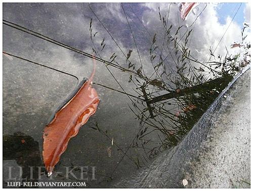 llifi-kei's Profile Picture