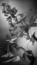 200 butterflies sculpture - part 5
