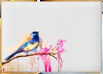 Bird - Realistic Paint Studio
