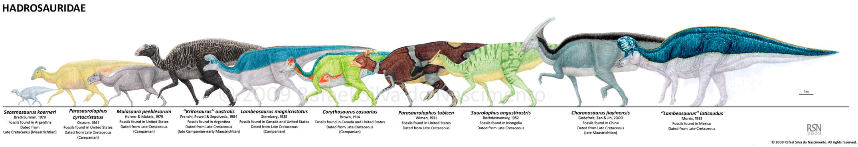 Hadrosauridae by RSNascimento