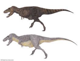 Tyrannosauridae II by RSNascimento