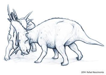 Styracosaurus albertensis by RSNascimento