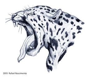 Jaguar by RSNascimento