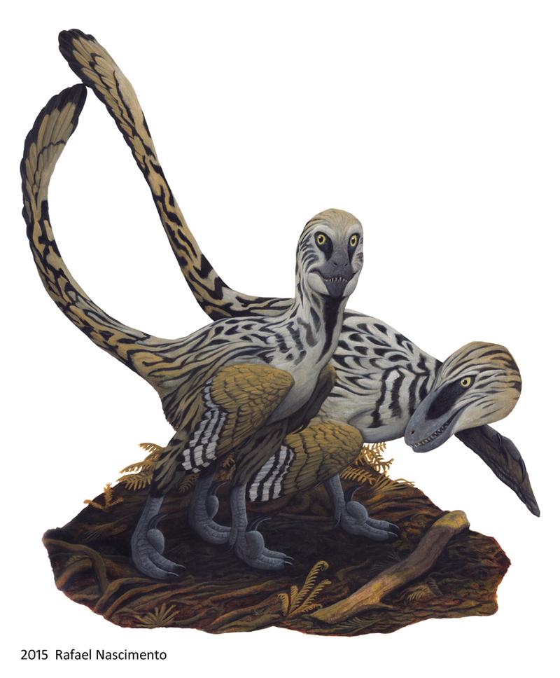 deinonychus sculpture by pheaston - photo #23
