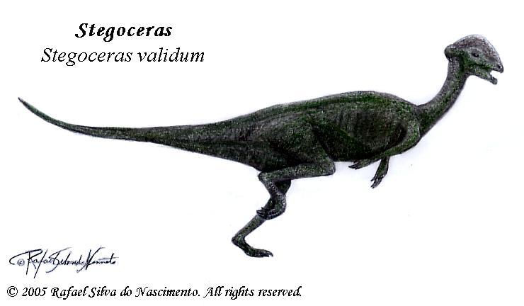 Stegoceras validum by RSNascimento