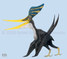 Pteranodon sternbergi by RSNascimento