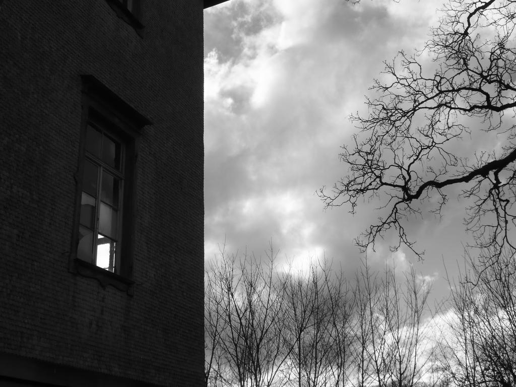 through broken windows by ugnip