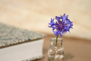 Blue Flower by ugnip
