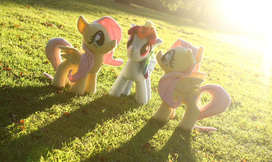 Pony Plushies Dashie_and_double_fluttershy_by_arualsti-d5ecm32