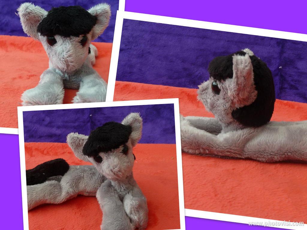 Pony Plushies - Page 4 Octavia_beanie_by_arualsti-d5p00ak