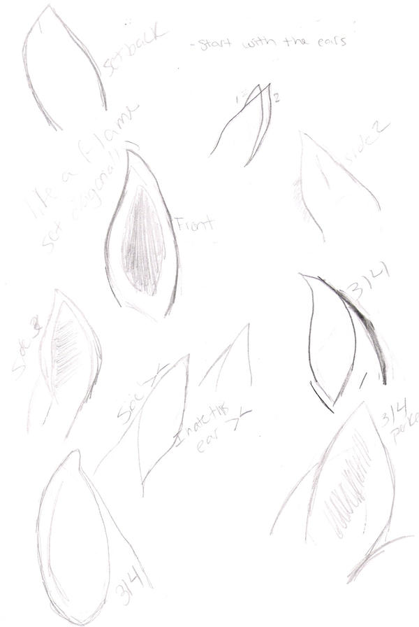 Horse Ears Tutorial by ArtOfTheChicken on DeviantArt