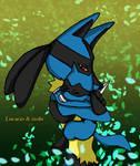 Pokemon: lucario and riolu